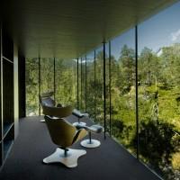 Contemplez la forêt Norvégienne