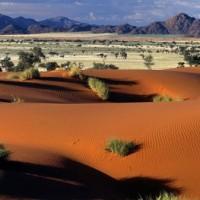 Namib, le cocktail océan et désert