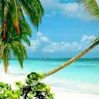 Séjour complet à l'Île Maurice, 7 nuits au paradis.