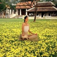 Un spa parmi les plus luxueux au monde en Thaïlande
