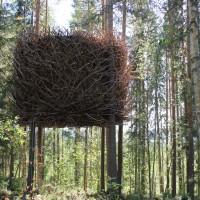 Le Tree Hotel, des cabanes inédites !