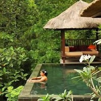 Un hôtel au coeur de la forêt à Bali